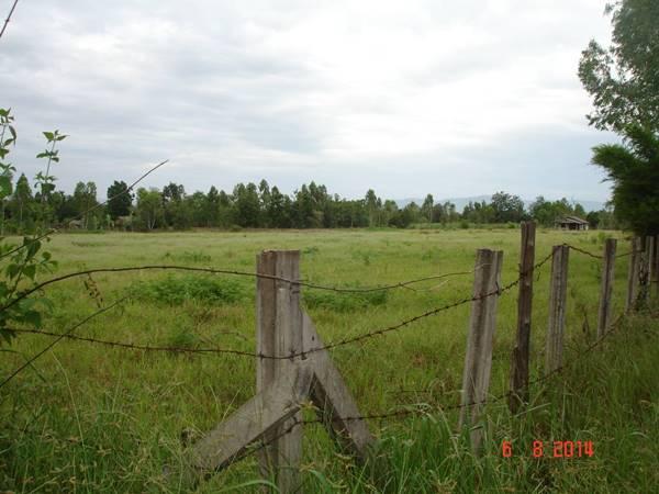 ขายที่ดินสำหรับทำการเกษตร มีโฉนด มีบ้านพักและสระเก็บน้ำ 21 ไร่ 3 งาน 80 ตารางวา โทร 0935398262
